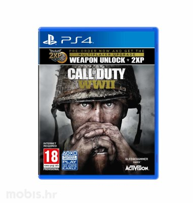 "Call of Duty ""WWII Standard Edition"" igra za PS4"