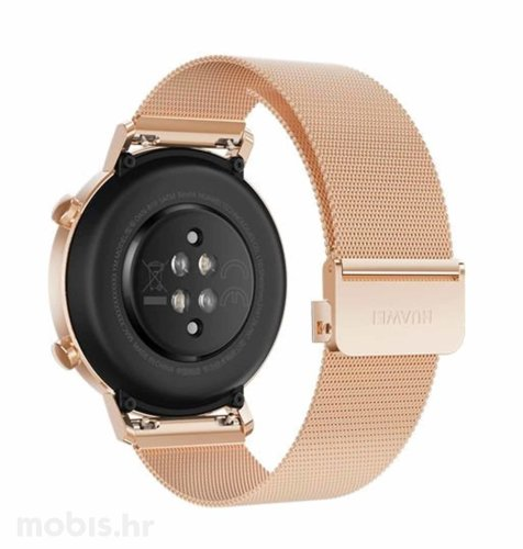 Huawei Watch GT 2 (42 mm): zlatni