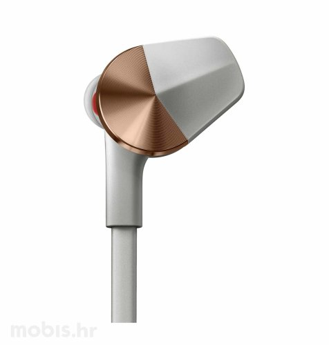 Fitbit Flyer bežične slušalice: sivo-brončane